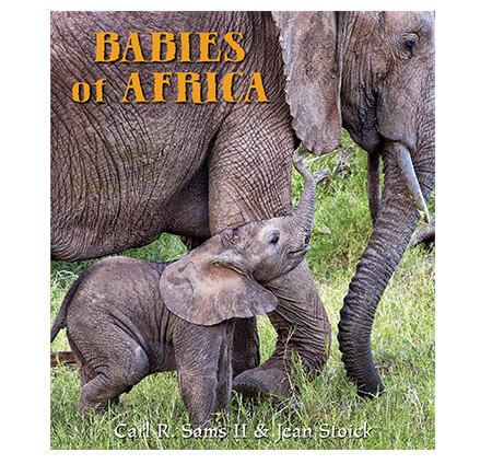 Babies Of Africa