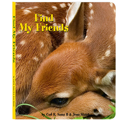 Find My Friends Board Book