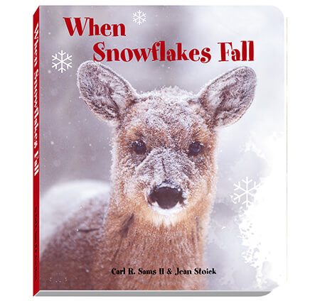 When Snowflakes Fall Board Book