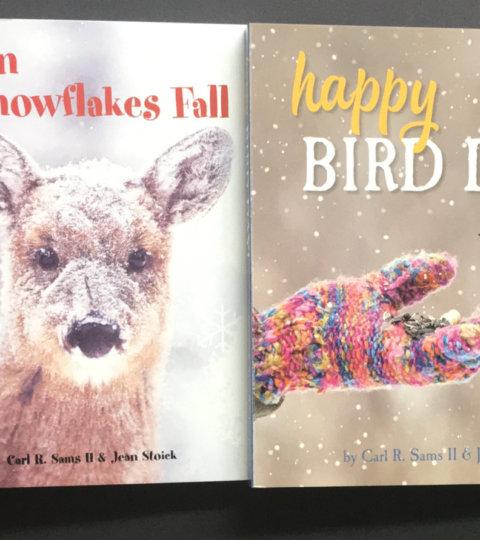 Summer Special Board Books